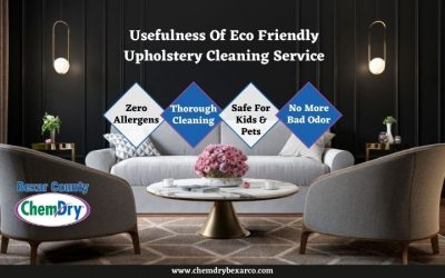Usefulness Of Eco Friendly Upholstery Cleaning Service