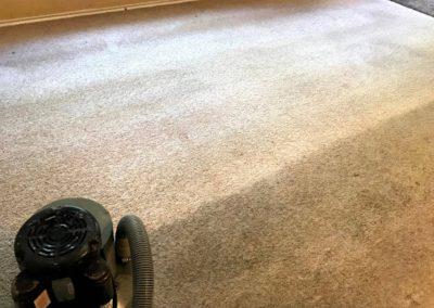 Carpet Cleaning Companies San Antonio