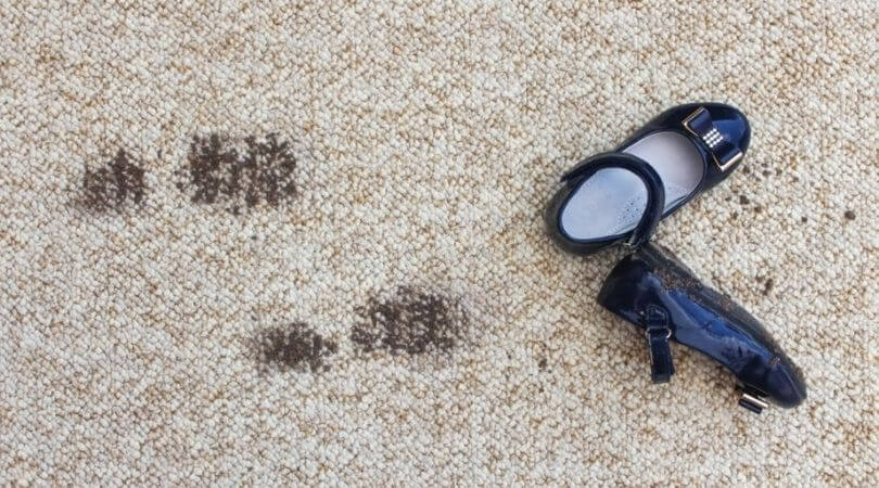 Professional Carpet Cleaning in Chicago, IL