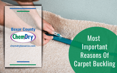 Most Important Reasons Of Carpet Buckling