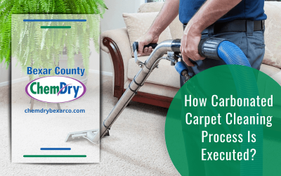 How Carbonated Carpet Cleaning Process Is Executed?